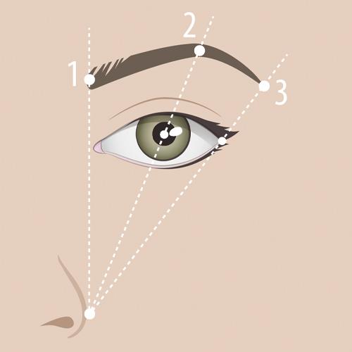 Schéma repère maquillage